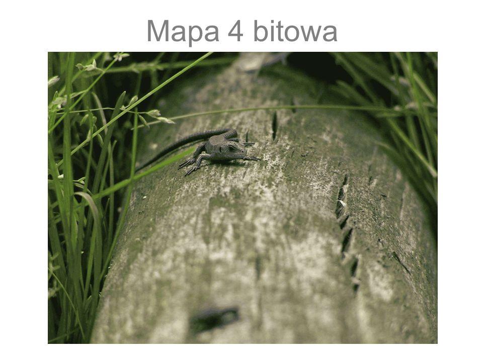 Mapa 8 bitowa