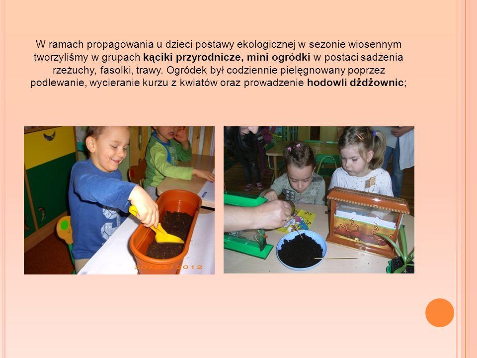 W ramach propagowania u dzieci postawy ekologicznej w sezonie wiosennym tworzyliśmy w grupach kąciki przyrodnicze, mini ogródki w postaci sadzenia rze