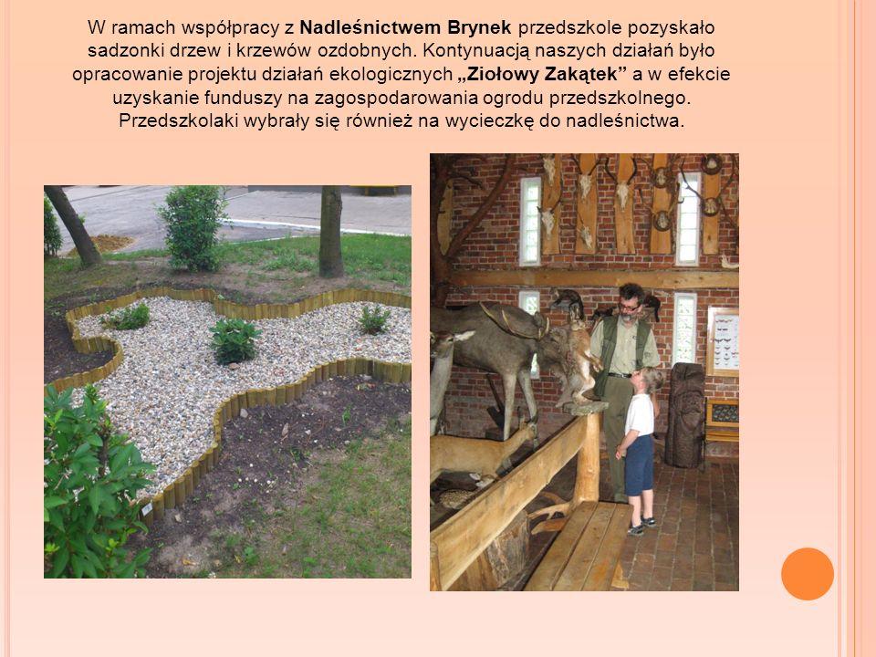 W ramach współpracy z Nadleśnictwem Brynek przedszkole pozyskało sadzonki drzew i krzewów ozdobnych. Kontynuacją naszych działań było opracowanie proj