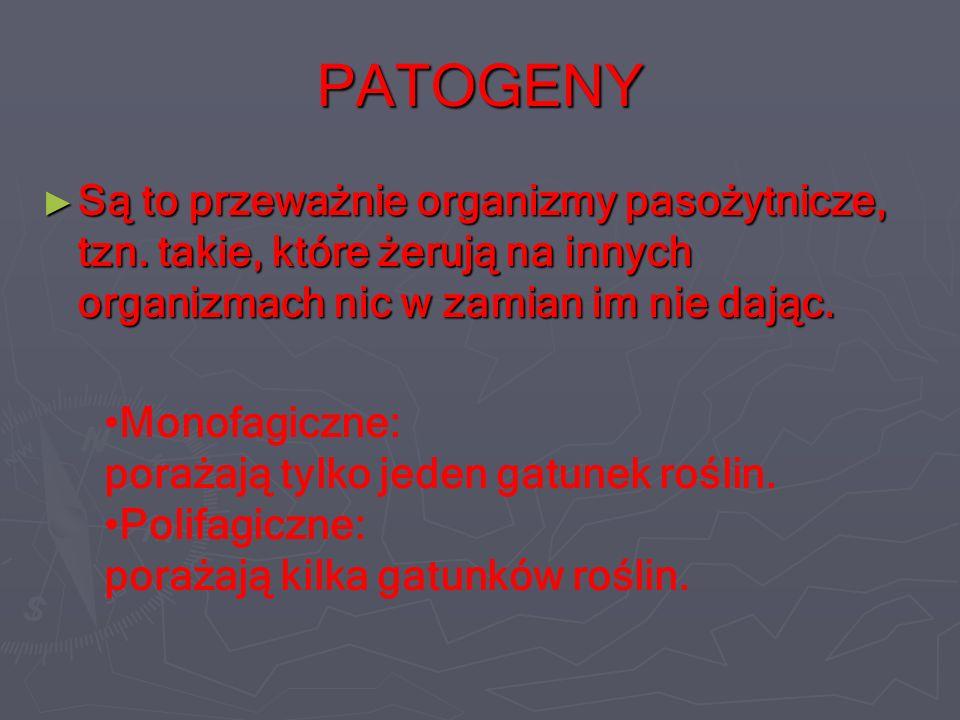 PATOGENY Są to przeważnie organizmy pasożytnicze, tzn.