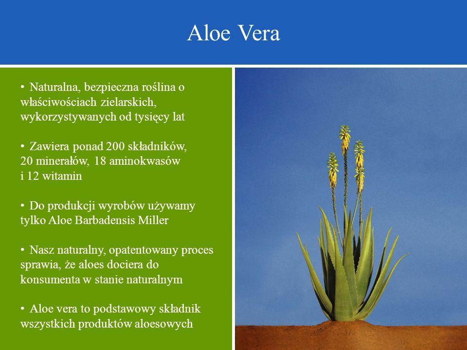 Aloe Vera Naturalna, bezpieczna roślina o właściwościach zielarskich, wykorzystywanych od tysięcy lat Zawiera ponad 200 składników, 20 minerałów, 18 a