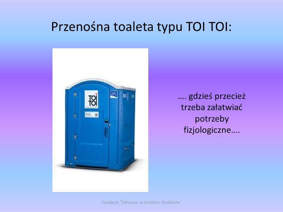 Przenośna toaleta typu TOI TOI: Fundacja