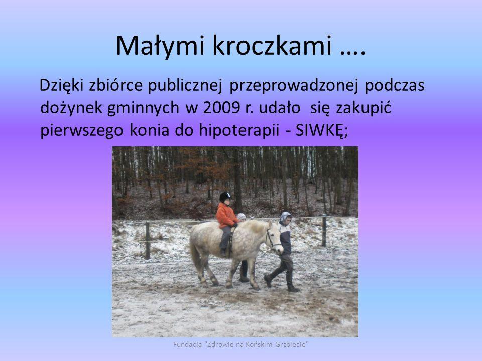 Małymi kroczkami …. Dzięki zbiórce publicznej przeprowadzonej podczas dożynek gminnych w 2009 r. udało się zakupić pierwszego konia do hipoterapii - S