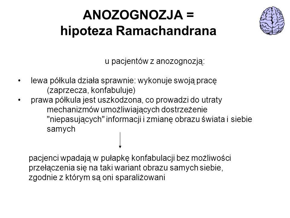 ANOZOGNOZJA = hipoteza Ramachandrana u pacjentów z anozognozją: lewa półkula działa sprawnie: wykonuje swoją pracę (zaprzecza, konfabuluje) prawa półk