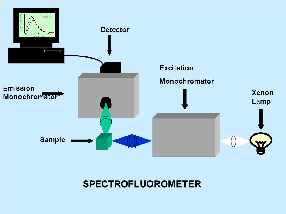 Emission Monochromator Detector Excitation Monochromator Xenon Lamp Sample SPECTROFLUOROMETER