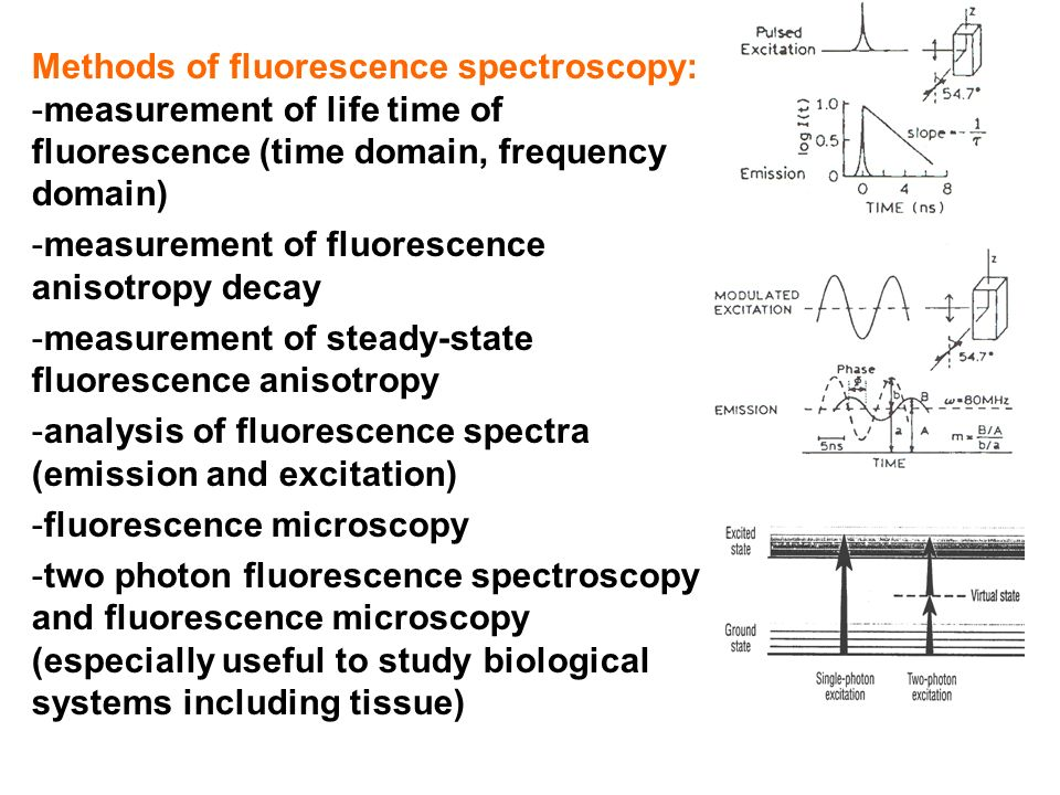 Methods of fluorescence spectroscopy: -measurement of life time of fluorescence (time domain, frequency domain) -measurement of fluorescence anisotrop