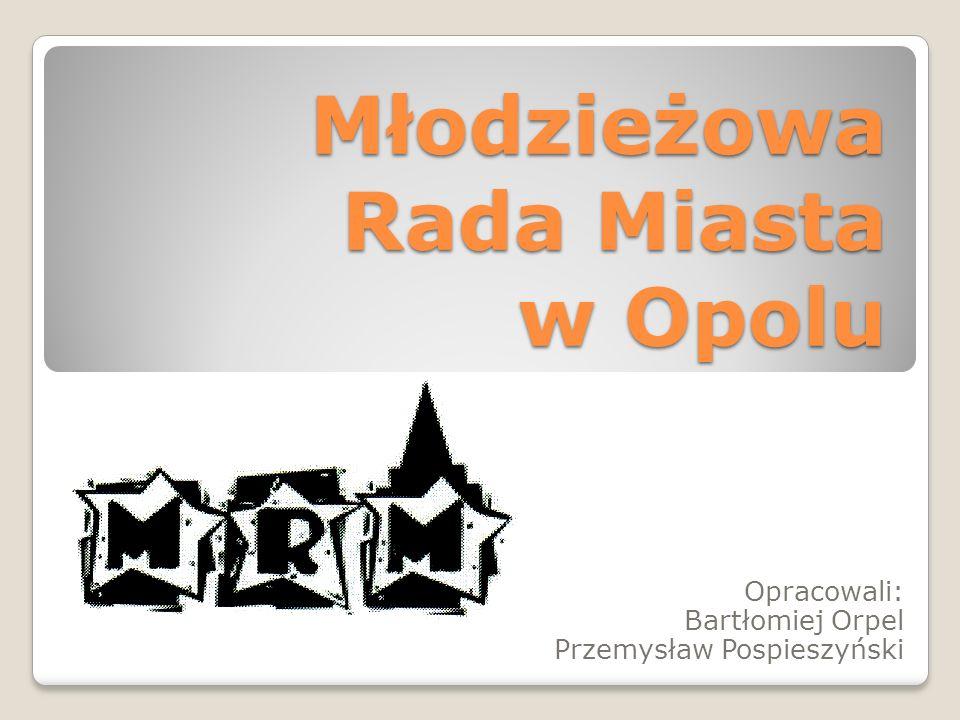 Warsztaty: Strategia Rozwoju Miasta Opola.