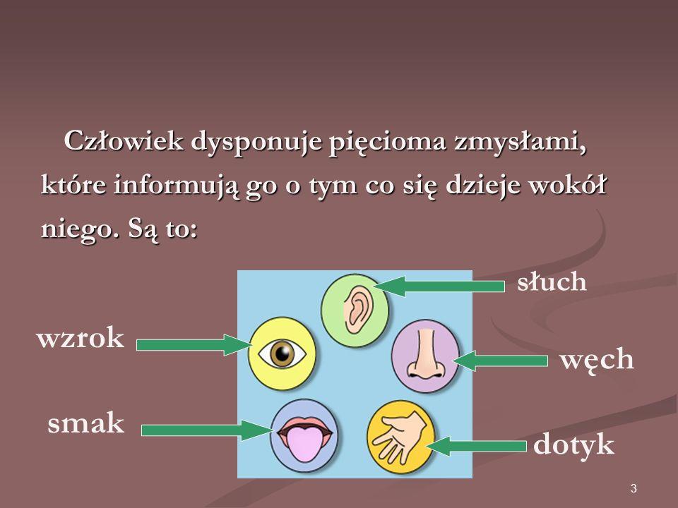 3 Człowiek dysponuje pięcioma zmysłami, Człowiek dysponuje pięcioma zmysłami, które informują go o tym co się dzieje wokół niego.