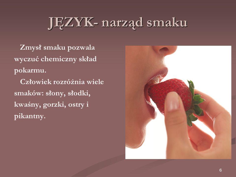 6 JĘZYK- narząd smaku Zmysł smaku pozwala wyczuć chemiczny skład pokarmu.