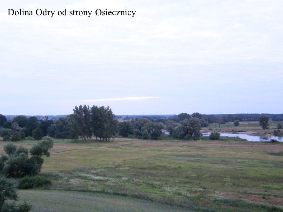 Dolina Odry od strony Osiecznicy