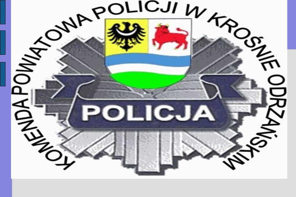 OCENA PRACY KOMENDY POWIATOWEJ POLICJI W KROŚNIE ODRZAŃSKIM ZA 2008 ROK.