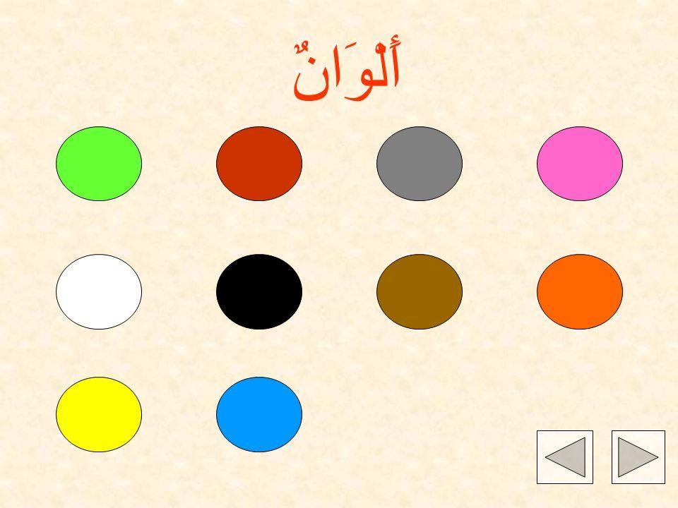 Naciśnij na kolor, aby usłyszeć nazwę po arabsk!