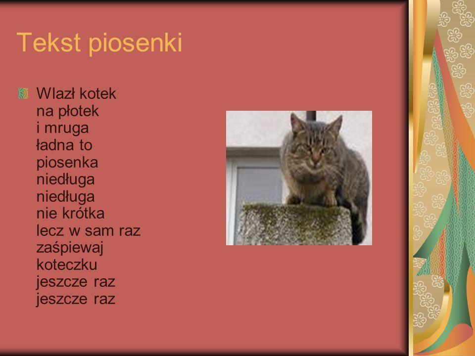 Tekst piosenki Wlazł kotek na płotek i mruga ładna to piosenka niedługa niedługa nie krótka lecz w sam raz zaśpiewaj koteczku jeszcze raz jeszcze raz