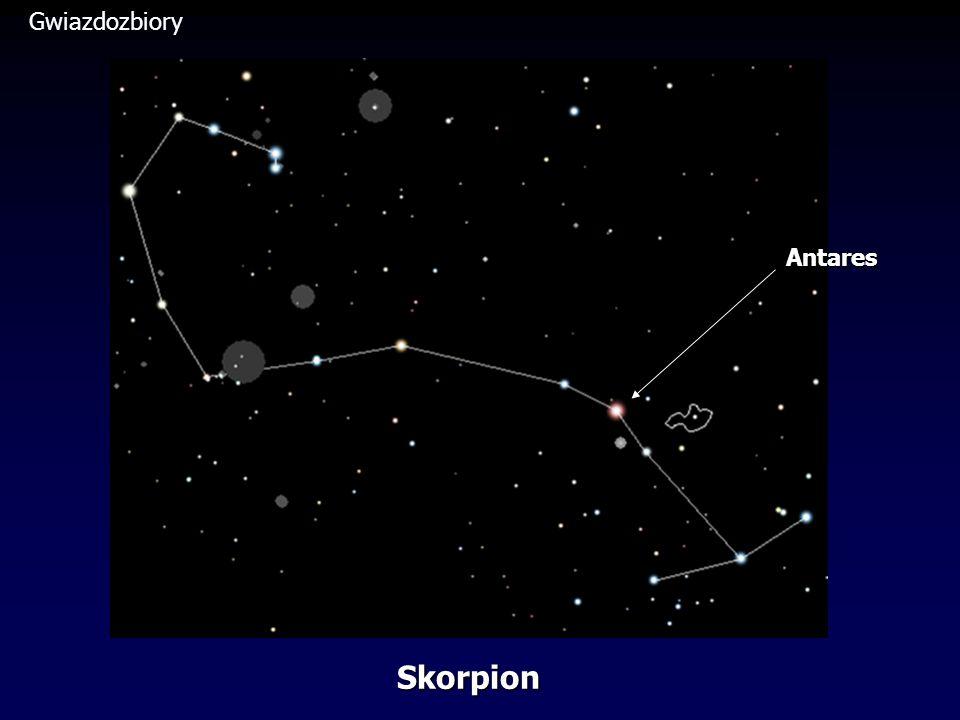 Skorpion Antares
