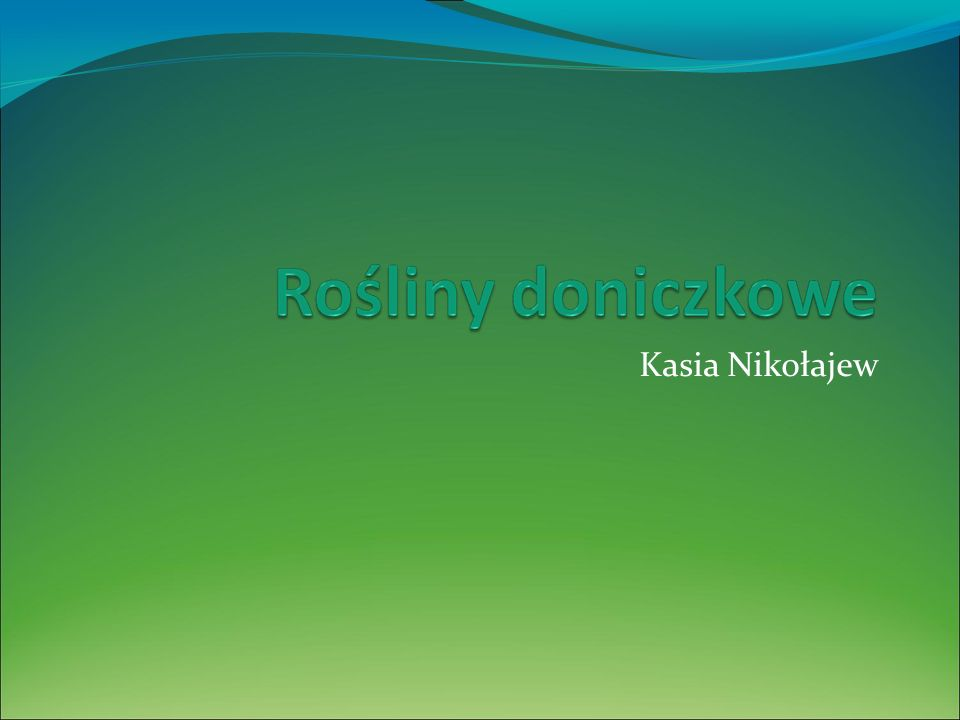 Kasia Nikołajew