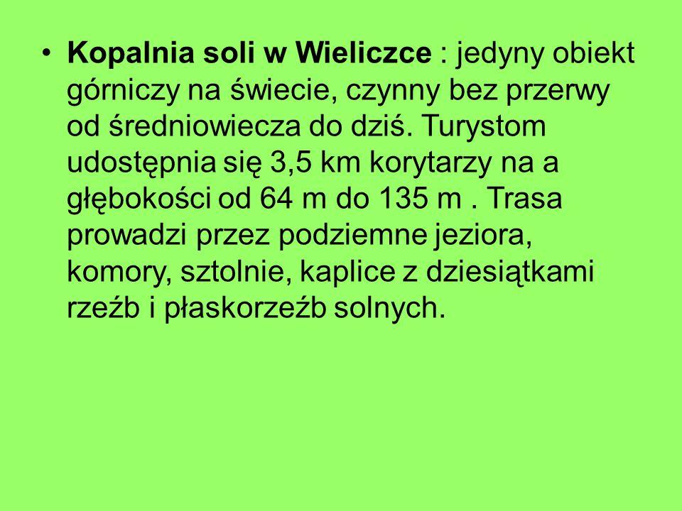 Kopalnia soli w Wieliczce : jedyny obiekt górniczy na świecie, czynny bez przerwy od średniowiecza do dziś. Turystom udostępnia się 3,5 km korytarzy n