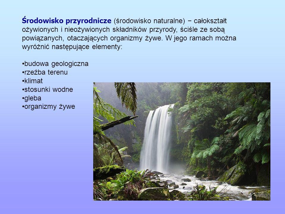 Środowisko przyrodnicze (środowisko naturalne) całokształt ożywionych i nieożywionych składników przyrody, ściśle ze sobą powiązanych, otaczających or