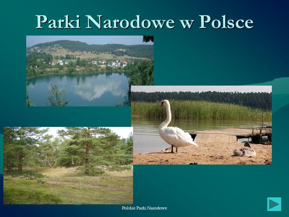 Polskie Parki Narodowe1 Parki Narodowe w Polsce