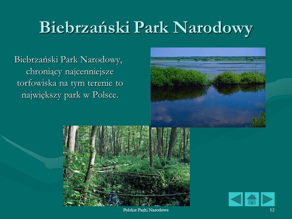 Polskie Parki Narodowe12 Biebrzański Park Narodowy Biebrzański Park Narodowy, chroniący najcenniejsze torfowiska na tym terenie to największy park w P