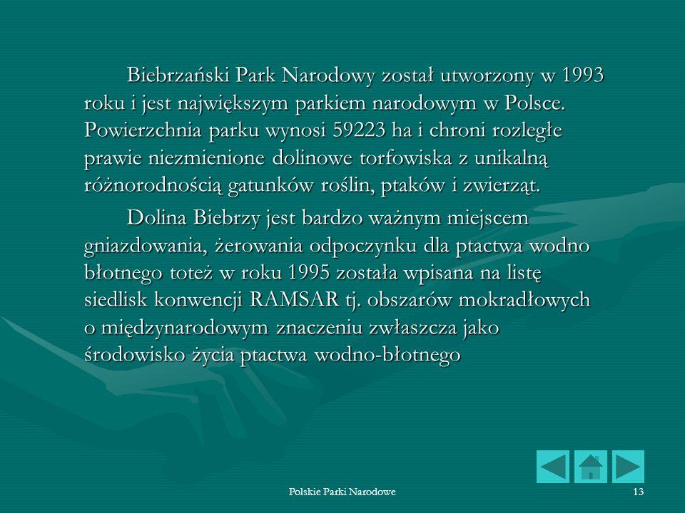 Polskie Parki Narodowe13 Biebrzański Park Narodowy został utworzony w 1993 roku i jest największym parkiem narodowym w Polsce. Powierzchnia parku wyno