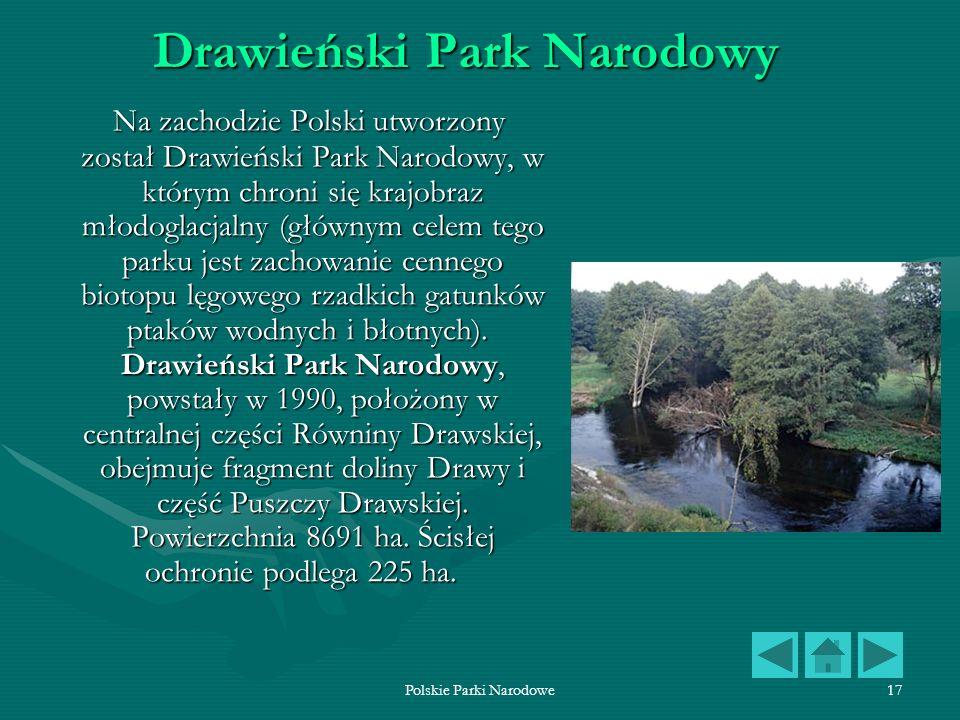 Polskie Parki Narodowe17 Drawieński Park Narodowy Na zachodzie Polski utworzony został Drawieński Park Narodowy, w którym chroni się krajobraz młodogl