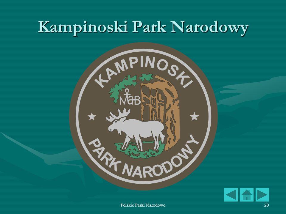 Polskie Parki Narodowe20 Kampinoski Park Narodowy