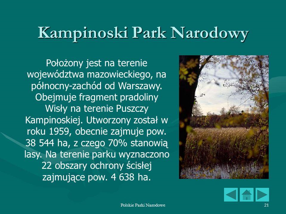 Polskie Parki Narodowe21 Kampinoski Park Narodowy Położony jest na terenie województwa mazowieckiego, na północny-zachód od Warszawy. Obejmuje fragmen