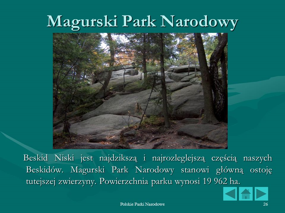 Polskie Parki Narodowe26 Magurski Park Narodowy Beskid Niski jest najdzikszą i najrozleglejszą częścią naszych Beskidów. Magurski Park Narodowy stanow