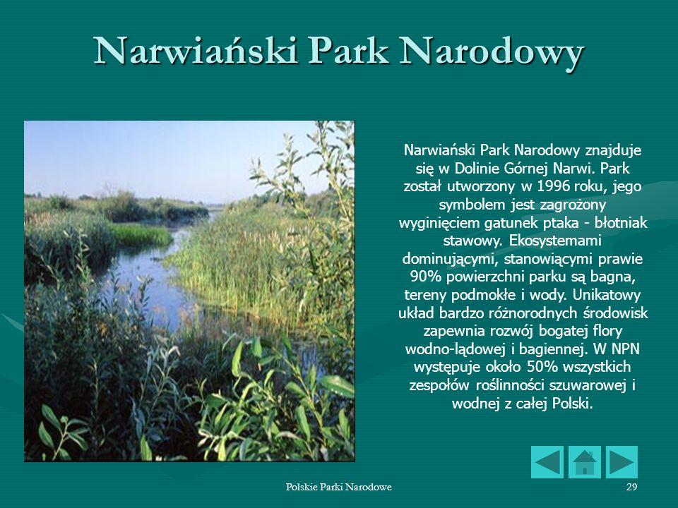 Polskie Parki Narodowe29 Narwiański Park Narodowy Narwiański Park Narodowy znajduje się w Dolinie Górnej Narwi. Park został utworzony w 1996 roku, jeg