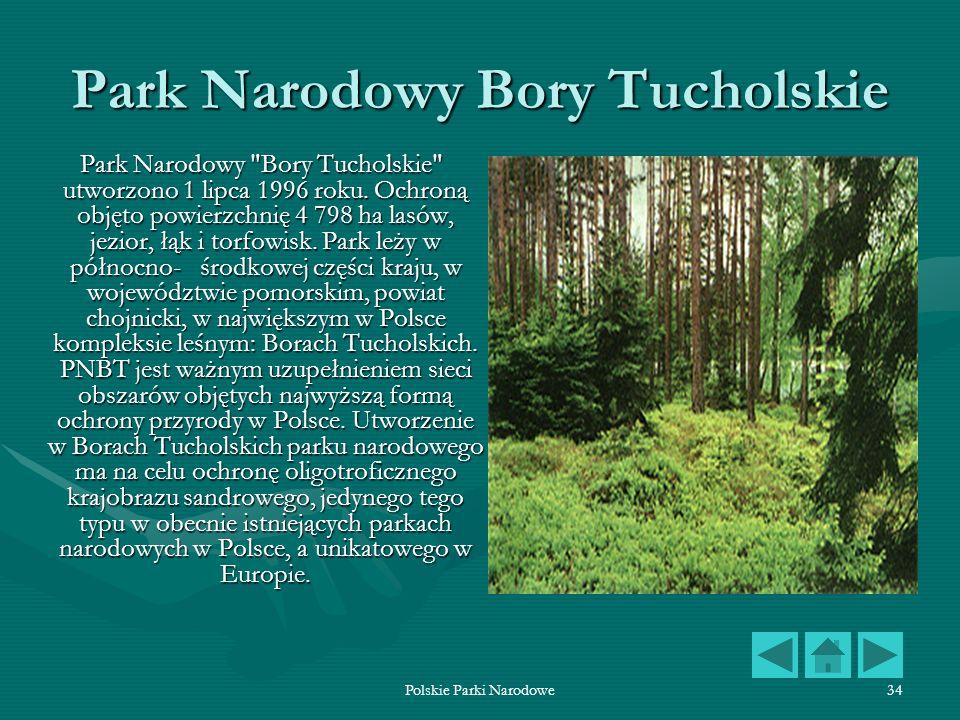 Polskie Parki Narodowe34 Park Narodowy Bory Tucholskie Park Narodowy