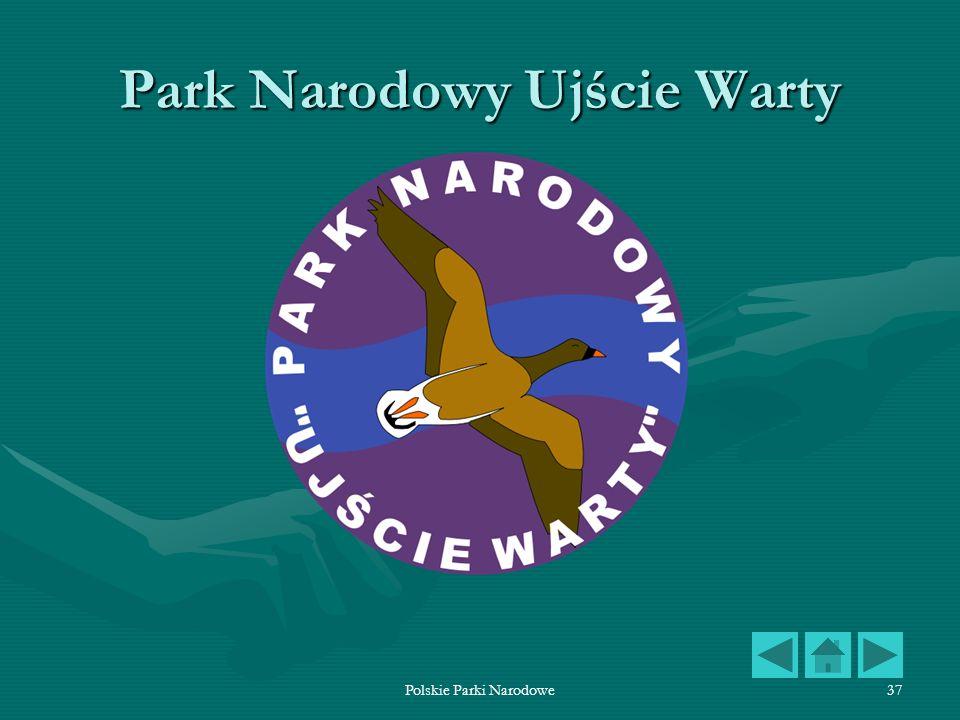 Polskie Parki Narodowe37 Park Narodowy Ujście Warty