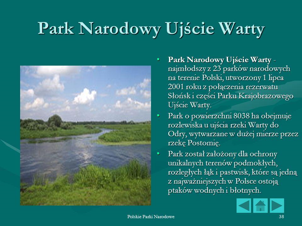 Polskie Parki Narodowe38 Park Narodowy Ujście Warty Park Narodowy Ujście Warty - najmłodszy z 23 parków narodowych na terenie Polski, utworzony 1 lipc