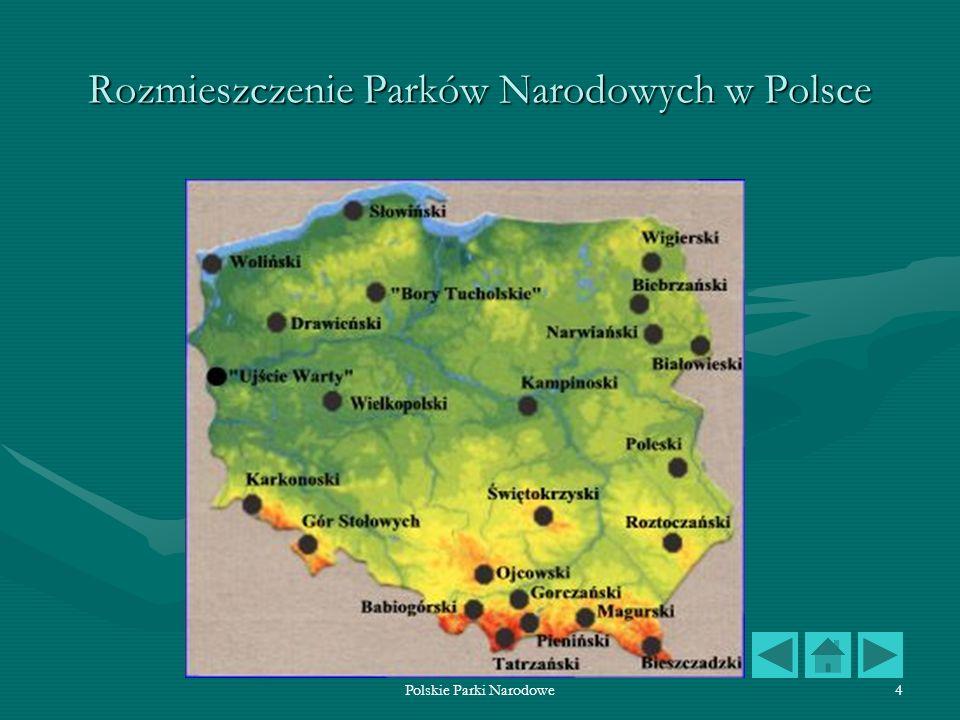 Polskie Parki Narodowe15 Bieszczadzki Park Narodowy Bieszczadzki Park Narodowy obejmuje dwa najwyższe pasma: graniczne ze Słowacją i Ukrainą ze szczytami Kremenarosem i Rozsypańcem, Wielką i Małą Rawką oraz pasmo połonin z Połoniną Wietlińską i Caryńską oraz Tarnicą.