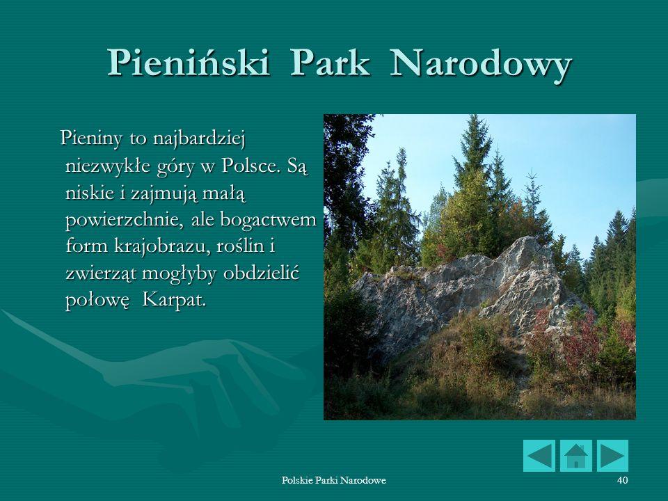 Polskie Parki Narodowe40 Pieniński Park Narodowy Pieniński Park Narodowy Pieniny to najbardziej niezwykłe góry w Polsce. Są niskie i zajmują małą powi