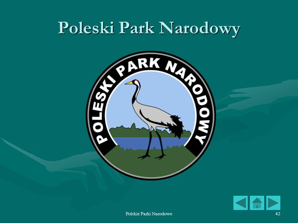 Polskie Parki Narodowe42 Poleski Park Narodowy