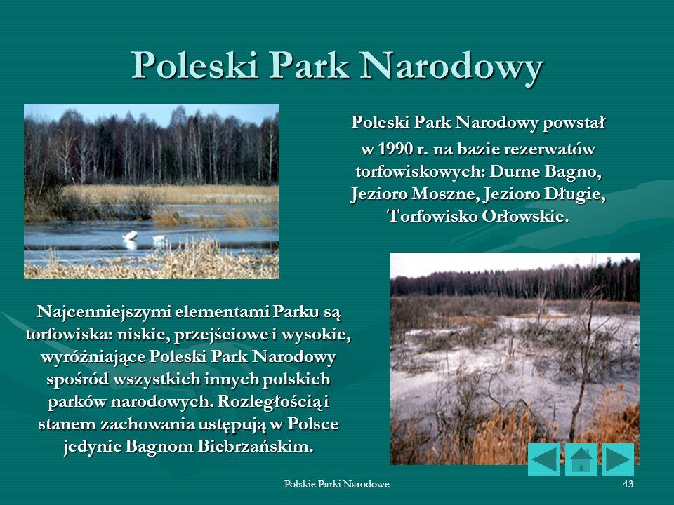 Polskie Parki Narodowe43 Poleski Park Narodowy Poleski Park Narodowy powstał w 1990 r. na bazie rezerwatów torfowiskowych: Durne Bagno, Jezioro Moszne