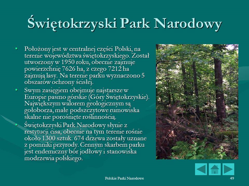 Polskie Parki Narodowe49 Świętokrzyski Park Narodowy Położony jest w centralnej części Polski, na terenie województwa świętokrzyskiego. Został utworzo
