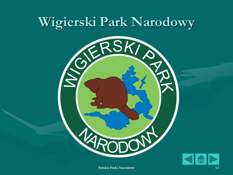 Polskie Parki Narodowe55 Wigierski Park Narodowy