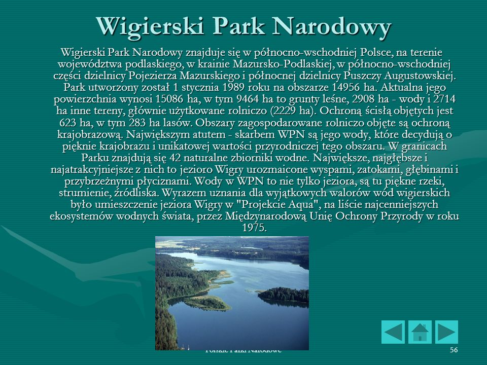 Polskie Parki Narodowe56 Wigierski Park Narodowy Wigierski Park Narodowy znajduje się w północno-wschodniej Polsce, na terenie województwa podlaskiego