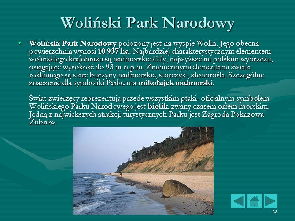 Polskie Parki Narodowe58 Woliński Park Narodowy Woliński Park Narodowy położony jest na wyspie Wolin. Jego obecna powierzchnia wynosi 10 937 ha. Najba