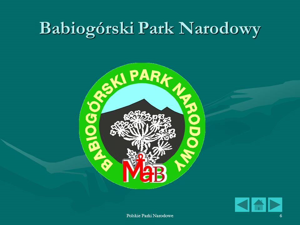 Polskie Parki Narodowe7 Babiogórski Park Narodowy Babiogórski Park Narodowy położony jest przy granicy ze Słowacją w Beskidzie Żywieckim na terenie województwa małopolskiego.