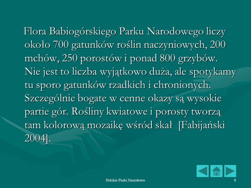 Polskie Parki Narodowe8 Flora Babiogórskiego Parku Narodowego liczy około 700 gatunków roślin naczyniowych, 200 mchów, 250 porostów i ponad 800 grzybó
