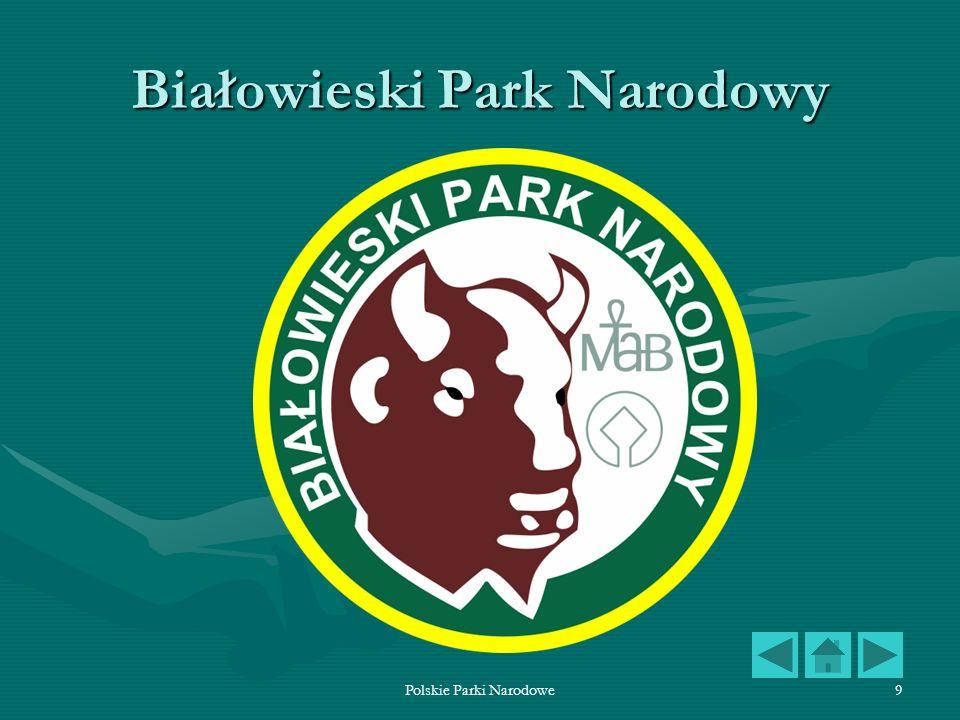 Polskie Parki Narodowe10 Białowieski Park Narodowy Białowieski Park Narodowy, utworzony w 1947 roku zajmuje 5348 ha.