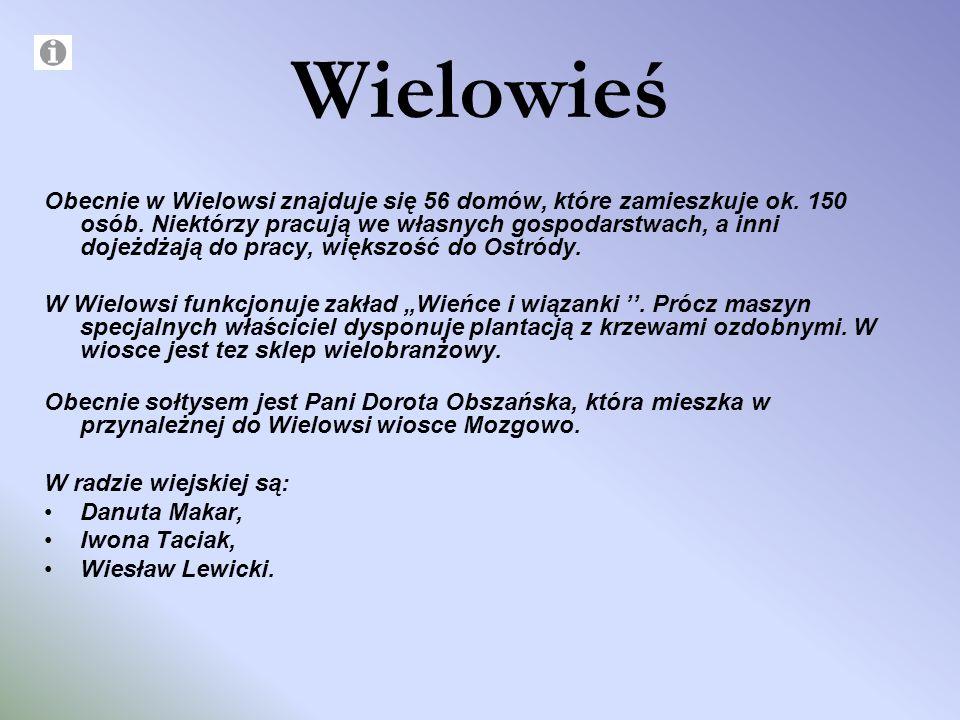 Wielowieś Obecnie w Wielowsi znajduje się 56 domów, które zamieszkuje ok. 150 osób. Niektórzy pracują we własnych gospodarstwach, a inni dojeżdżają do