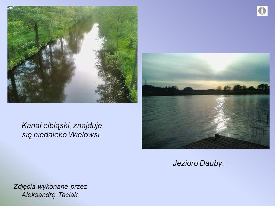 Kanał elbląski, znajduje się niedaleko Wielowsi. Jezioro Dauby. Zdjęcia wykonane przez Aleksandrę Taciak.