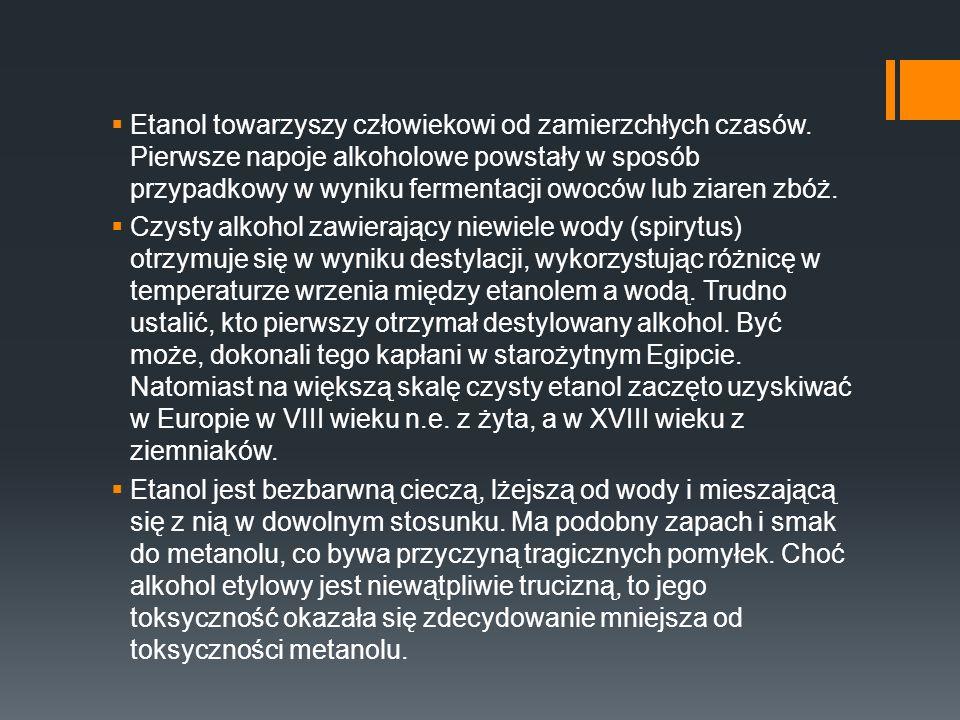 Etanol towarzyszy człowiekowi od zamierzchłych czasów. Pierwsze napoje alkoholowe powstały w sposób przypadkowy w wyniku fermentacji owoców lub ziaren