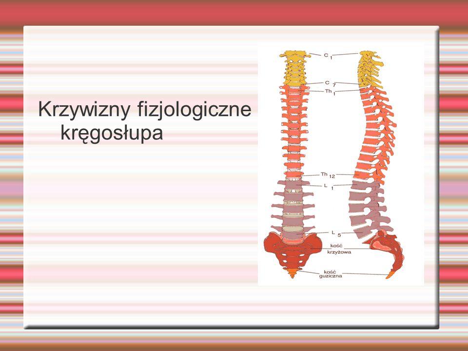 Skrzywienia kręgosłupa jest to choroba układu kostnego kręgosłupa powstająca na ogół w dzieciństwie spowodowana wieloma przyczynami, jak : zwichnięcie bioder małego dziecka, zjawisko szybszego wzrostu kręgosłupa niż jego mięśniowego otoczenia, złamanie kości ogonowej od upadku