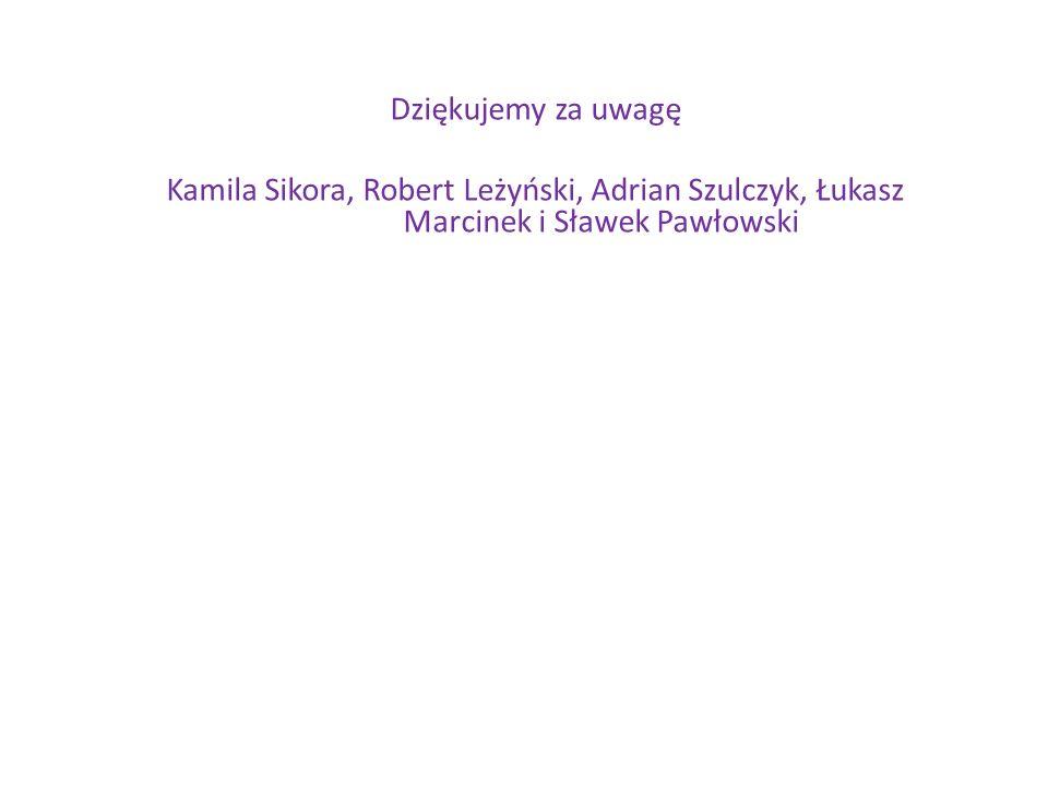 Dziękujemy za uwagę Kamila Sikora, Robert Leżyński, Adrian Szulczyk, Łukasz Marcinek i Sławek Pawłowski