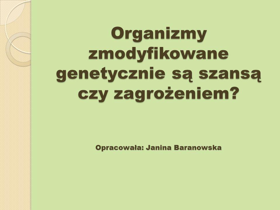 Organizmy zmodyfikowane genetycznie są szansą czy zagrożeniem? Opracowała: Janina Baranowska