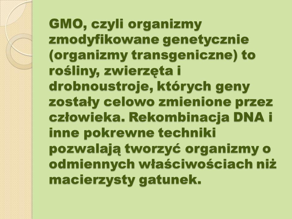 GMO, czyli organizmy zmodyfikowane genetycznie (organizmy transgeniczne) to rośliny, zwierzęta i drobnoustroje, których geny zostały celowo zmienione